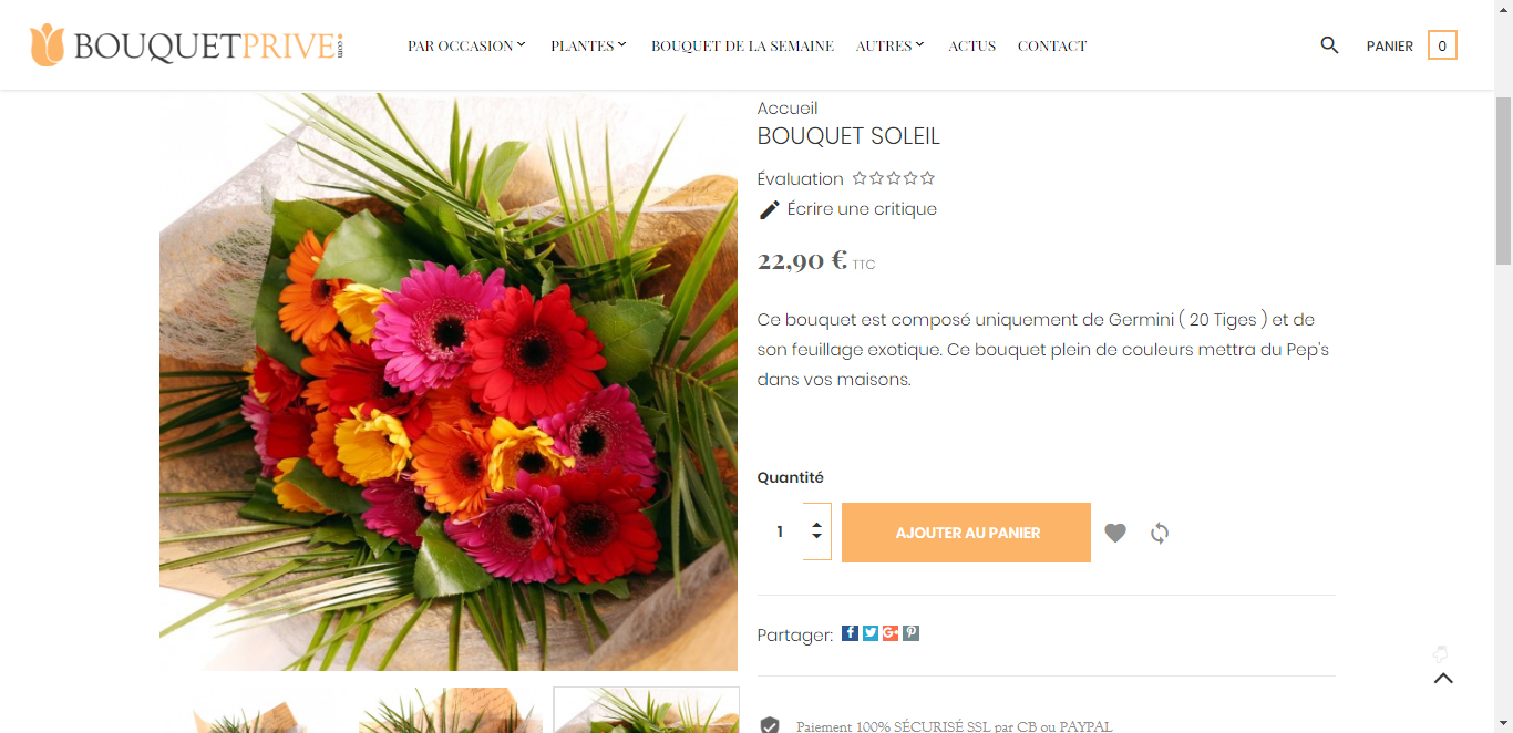 BOUQUET-soleil-bouquet-prive